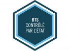 Logo BTS officiel
